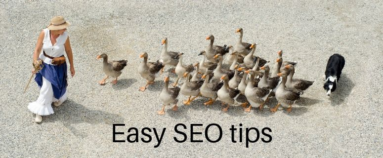 Easy to Follow SEO Tips & Techniques